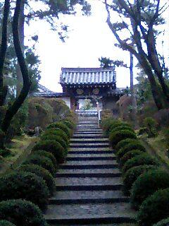 願い〜2007年〜